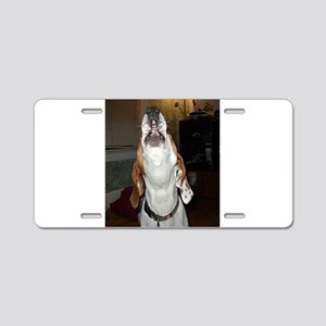treeing walker coonhound baying Aluminum License P