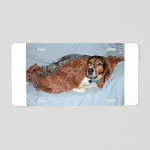 treeing walker coonhound in blanket Aluminum Licen