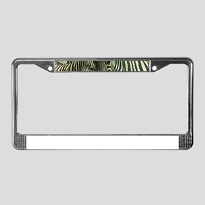 Zebras License Plate Frame