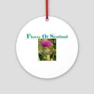 Flower Of Scotland(3) Ornament (Round)