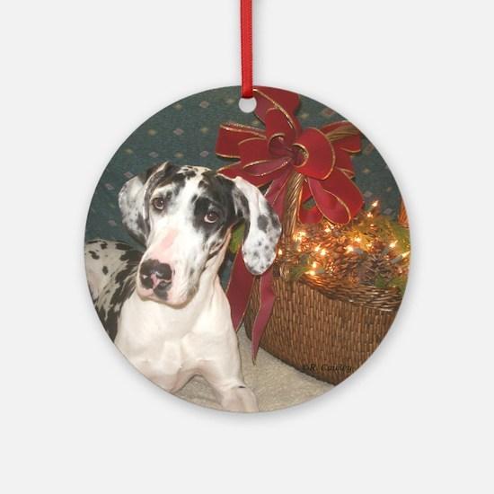 N Harl Holiday Basket Ornament (Round)