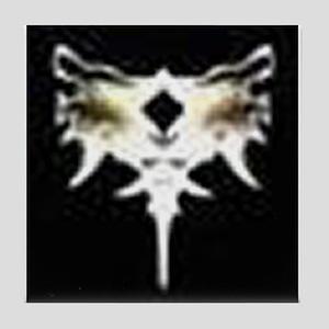 Beast Rune Coaster