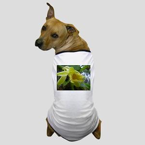 Vanilla Orchid Dog T-Shirt