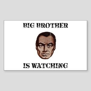 Big Brother Watching Sticker