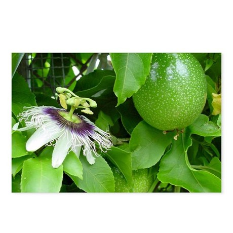 Passion Fruit and Flower Postcards (Package of 8)