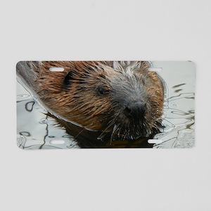 Beaver  swimming  Aluminum License Plate