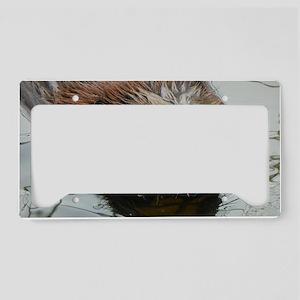 Beaver  swimming  License Plate Holder