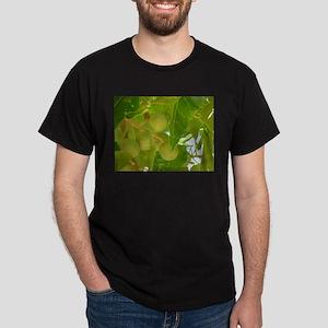 Kukui Tree with Nuts Dark T-Shirt