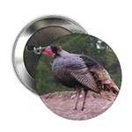Tom Turkey Button