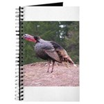Tom Turkey Journal