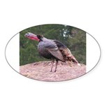Tom Turkey Oval Sticker