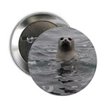 """Harbor Seal 2.25"""" Button (10 pack)"""