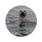 """Harbor Seal 3.5"""" Button (100 pack)"""