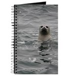 Harbor Seal Journal