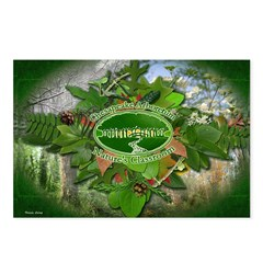 Chesapeake Arboretum 06 cover Postcards (Package o