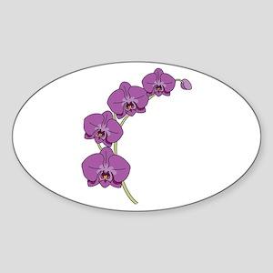 Purple Orchid Sticker