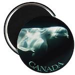 Canada Souvenir Beluga Whale Fridge Magnet 10 pack