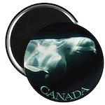 Canada Souvenir Beluga Whale Fridge Magnet