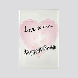 Love is my English Foxhound Rectangle Magnet