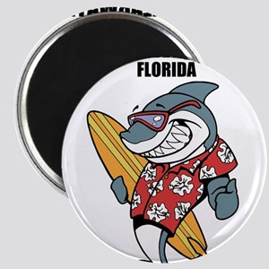 Clearwater, Florida Magnets