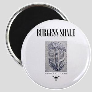 Burgess Shale Magnet