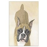 Boxer Large Poster