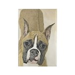Boxer Rectangle Magnet (100 pack)