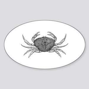 Dungeness Crab (line art) Sticker