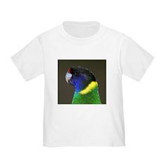 Parrot T