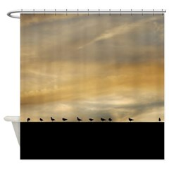 Seagull Lineup Shower Curtain