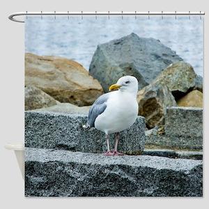 Sardonic Seagull Shower Curtain
