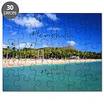 Honolulu Puzzle
