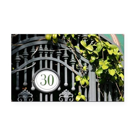 Door 30 Rectangle Car Magnet