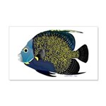 French Angelfish Wall Decal
