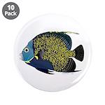 French Angelfish 3.5