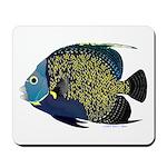 French Angelfish Mousepad