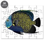 French Angelfish Puzzle