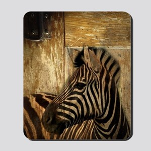 wild zebra safari Mousepad