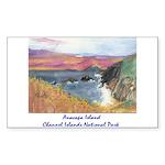 Anacapa Island Channel Islands National Park Stick