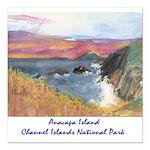Anacapa Island Channel Islands National Park Squar