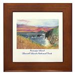 Anacapa Island Channel Islands National Park Frame