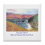 Anacapa Island Channel Islands National Park Tile