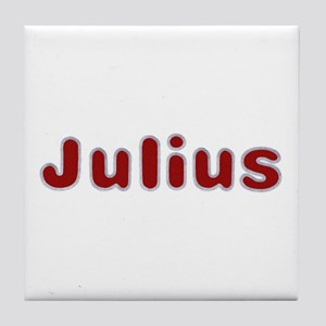 Julius Santa Fur Tile Coaster
