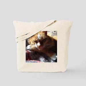 Cozy Sunny Cat Tote Bag