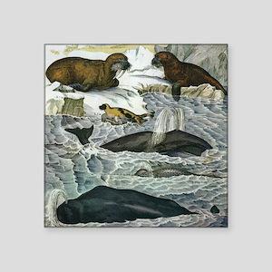 """Vintage Marine Mammals Square Sticker 3"""" x 3"""""""