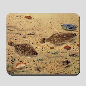 Vintage Marine Life Fish, Flounders Mousepad