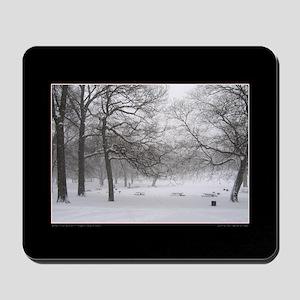 Winter Picnic Grounds Mousepad
