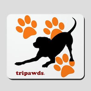 Tripawds Hound Dog Mousepad