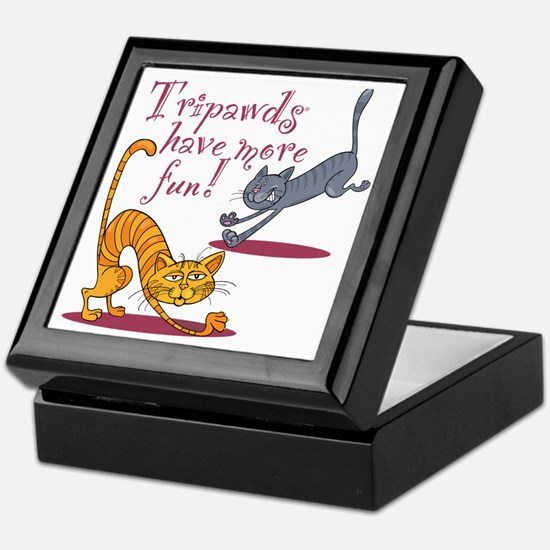 Tripawd Cats Have Fun Keepsake Box