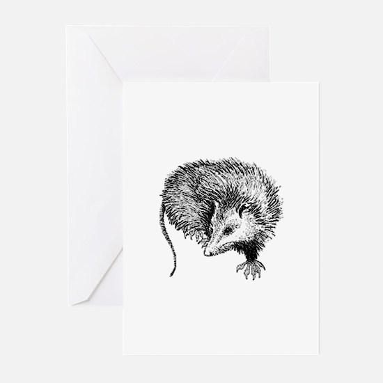 Opossum (line art) Greeting Cards